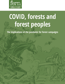 COVID, forests and forest peoples