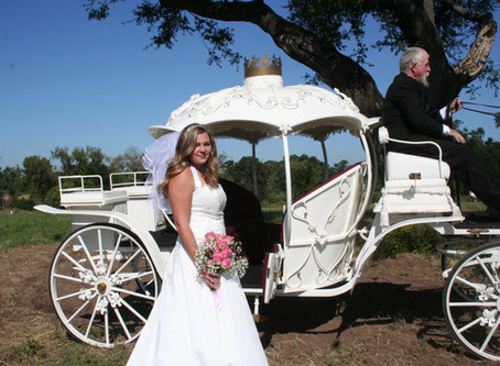 Lockewood Stables' Cinderella Carriage Conveys Cal Expo Bridal Fair Guests + Fetes Open House