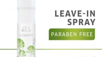 Leave in spray