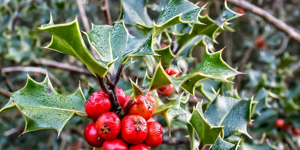 A Holly-Wood Christmas