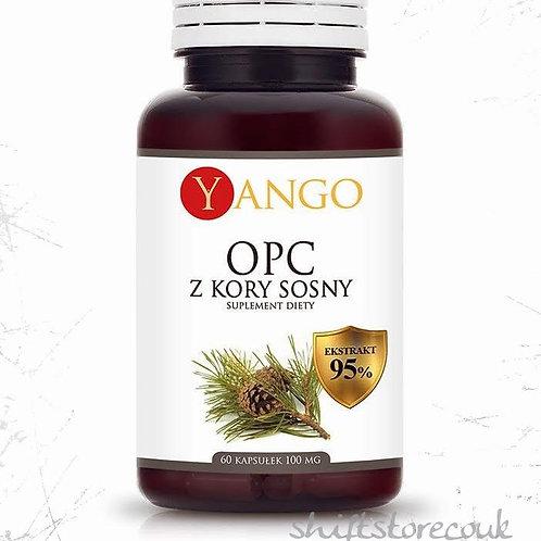 Yango OPC (Polyphenols) 95% from Pine Bark - 60 capsules