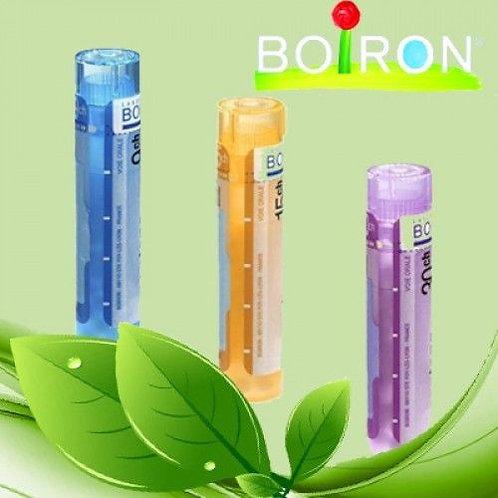 Boiron Homeophaty Single Remedy Variations 5CH,9CH,15CH,30CH