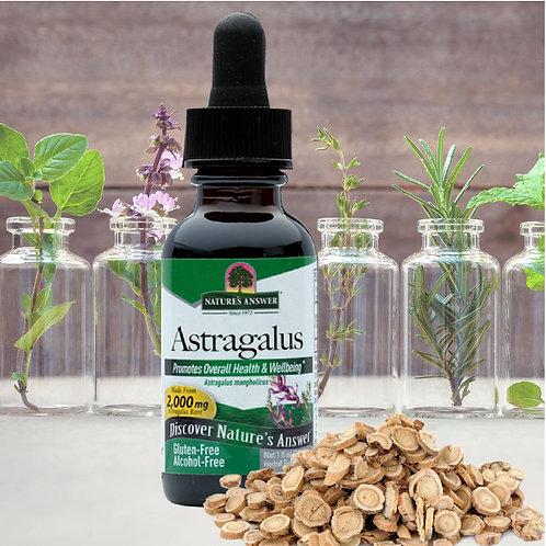 Nature's Answer - Astragalus (Astragalus membranaceus) 30ml