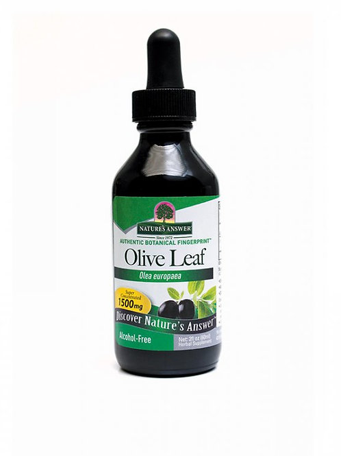 Nature's Answer, Olive Leaf - OleuroPein®, Alcohol-Free, 60 ml