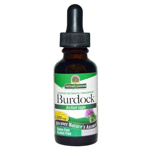 Nature's Answer - Burdock (Arcitum lappa)  30ml