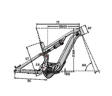 5. vector.jpg
