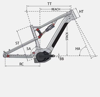 2. vector.jpg