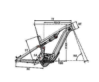 8. vector.jpg