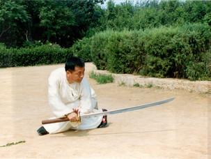 Kung Fu Workshop in Italy