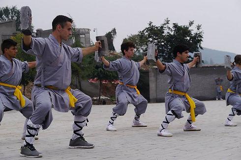 Shaolin Bricks.jpg