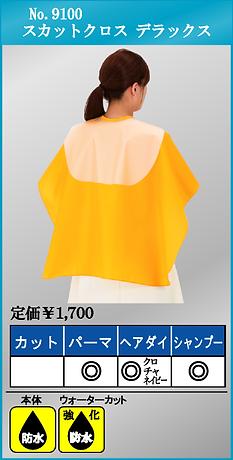 No.9100.bmp