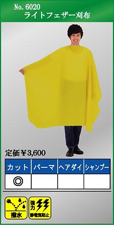 No.6020.bmp
