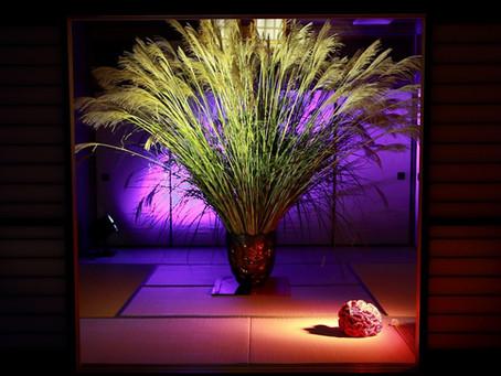 コロンビア大使館でのコロンビアの花のイベント~Colombia Flower Inspiration~をAsocolfloresの依頼でプロデュース
