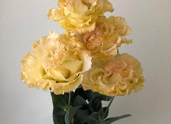 Lisianthus Yellow
