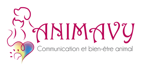 Logo ANIMAVY PNG (1) ecriture seule.png