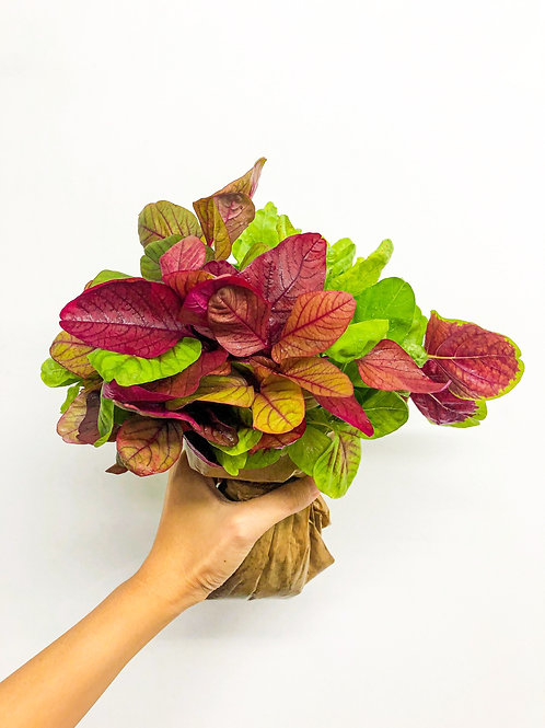 Leafy Vegetables Bouquet (Small)
