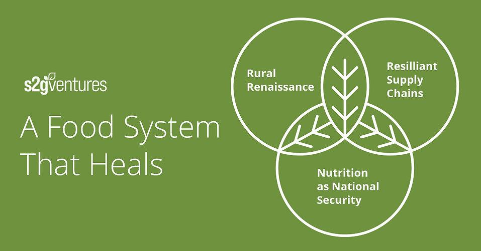 s2g_food system blog_v2_1200x628.jpg