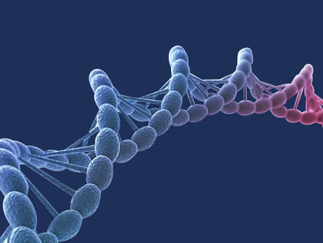 The Role of RNA in the Biological Revolution