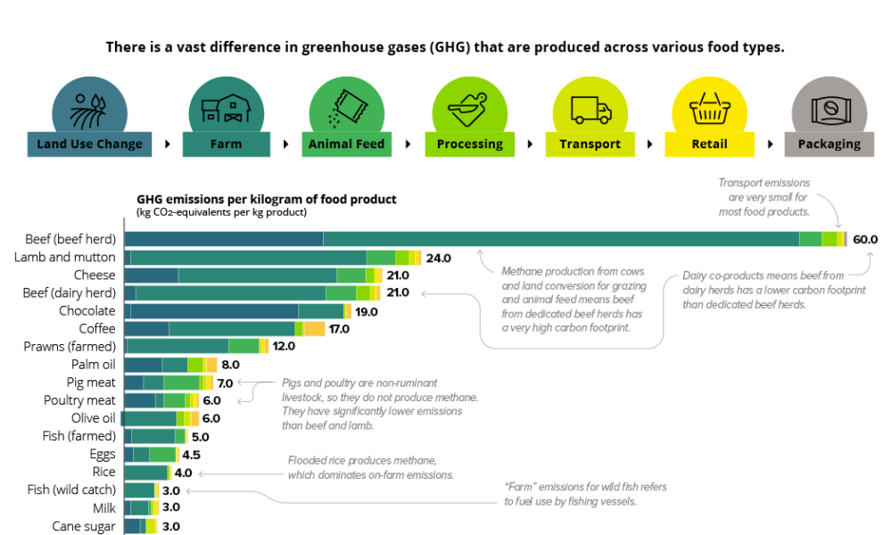 Greenhouse Gasses Produced Across Food Types | S2G Ventures Seeding Change