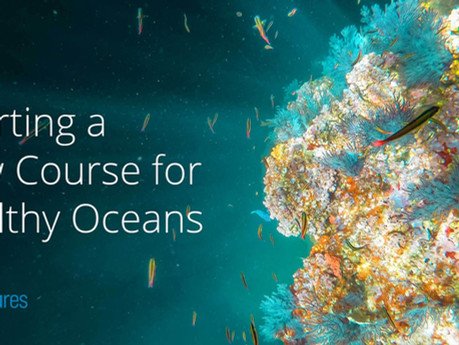 Charting a New Course for Healthy Oceans
