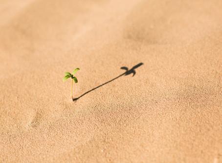 Positivity through adversity