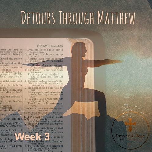 Week Three Study Guide: Detours through Matthew