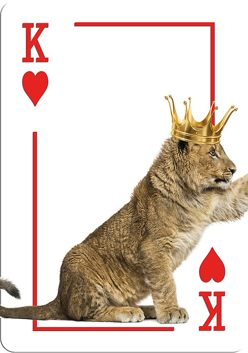 King & Queen Lion King Family