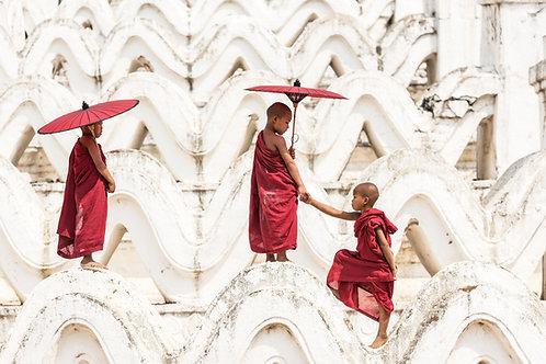 Curious Monks