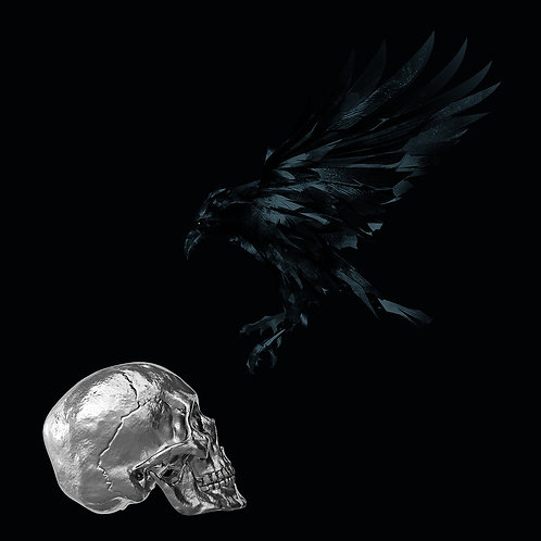 Black Rave Silver
