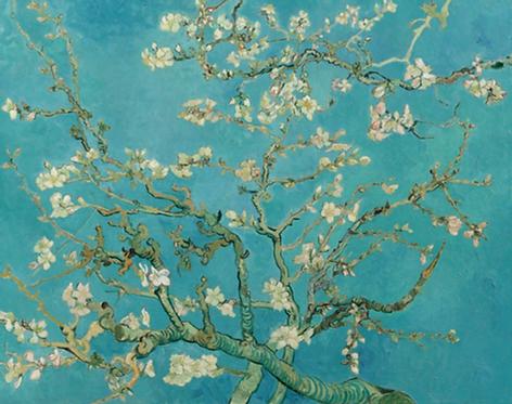 Van Gogh's 'Almond Blossom'