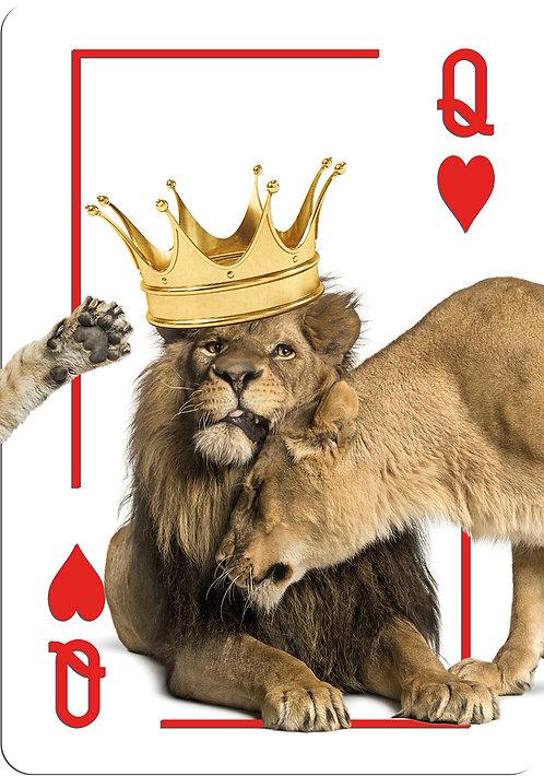 King & Queen Lion Queen family