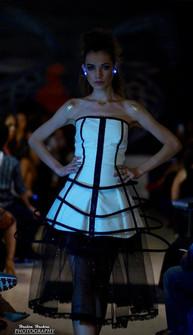 alienphant runway cage dress.jpg