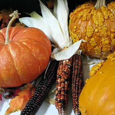 October - pumpkins3.jpg