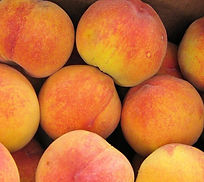 Peaches1_edited.jpg