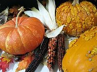 PumpkinsIndianCorn.jpg