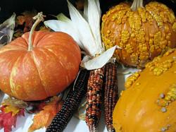 PumpkinsIndianCorn
