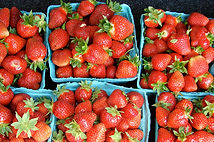 StrawberryBaskets.jpg