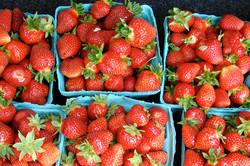 StrawberryBaskets