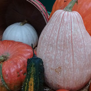 October - pumpkins9.jpg