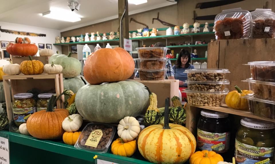October - pumpkins11