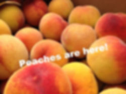 fruit - Peaches2.jpg