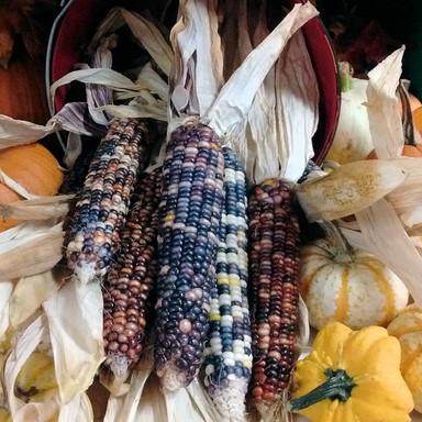 October - IndianCorn.jpg