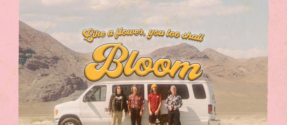 Carpool Tunnel - Bloom