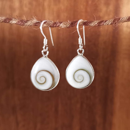 Dainty Shiva Shell Teardrop Earrings