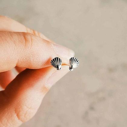 Mini Shell Ear Studs