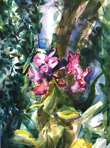 """Watercolor painting, """"Third Street South Orchids"""""""