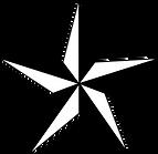 black texas star.png