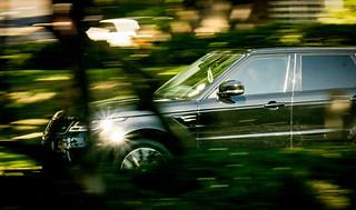 Car photography:vivid image SUV streaking down leafy green street.