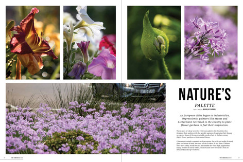 A gallery of flora photography and short story about how artits of the renaisance period grew their own gardens to gain inspiration