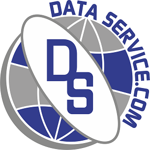 Logo Data Service png.png